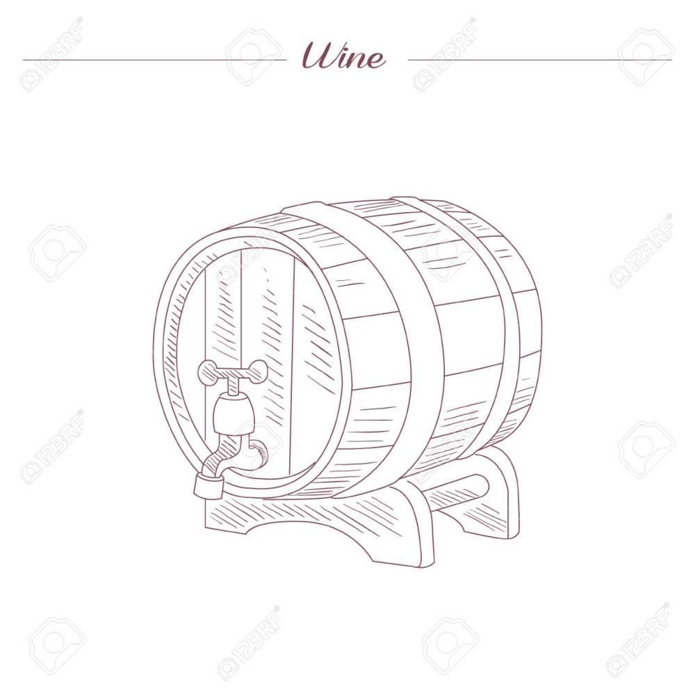 medium resolution of vector wine tun hand drawn realistic sketch