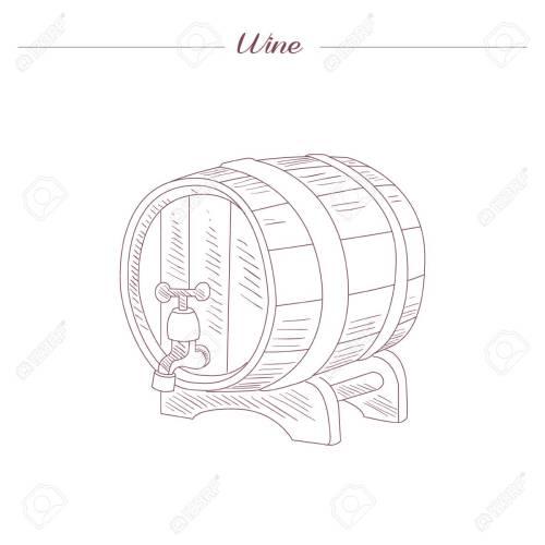 small resolution of vector wine tun hand drawn realistic sketch