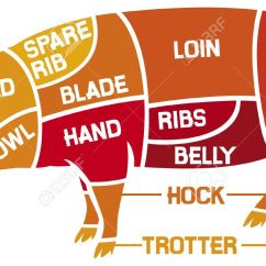 Pork Butcher Cuts Diagram 2002 Harley Sportster Wiring Of Meat Diagrams Scheme Carcasses Fresh Stock Vector 17470218