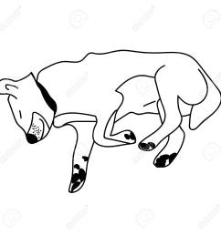 sleeping dog outline isolated stock vector illustration stock vector 122330611 [ 1300 x 1300 Pixel ]