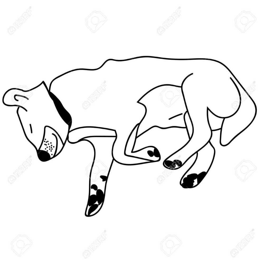 medium resolution of sleeping dog outline isolated stock vector illustration stock vector 122330611