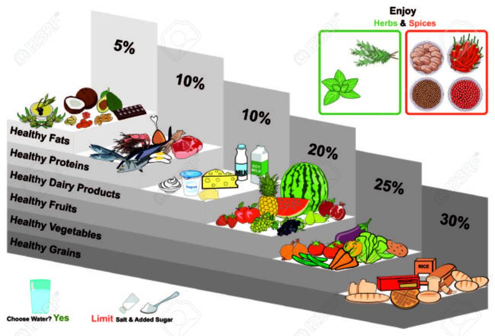 medium resolution of healthy food pyramid infographic chart nutrition balance and with all groups grains vegetables fruits dairy milk