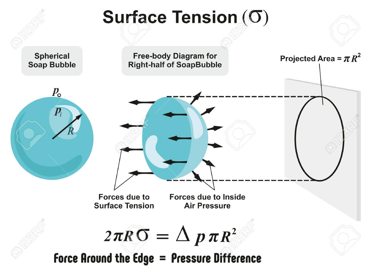 hight resolution of surface tension physics lesson of spherical soap bubble with all forces arrows and inside air pressure