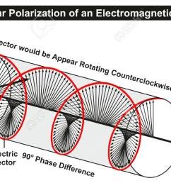 circular polarization of an electromagnetic light wave infographic diagram showing electric fields phase difference direction of [ 1300 x 757 Pixel ]