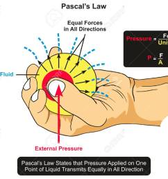 pascal s law infographic diagram showing an example of body of fluid held by hand and an external pressure applied by thumb and the forces transmits equally  [ 1300 x 1062 Pixel ]