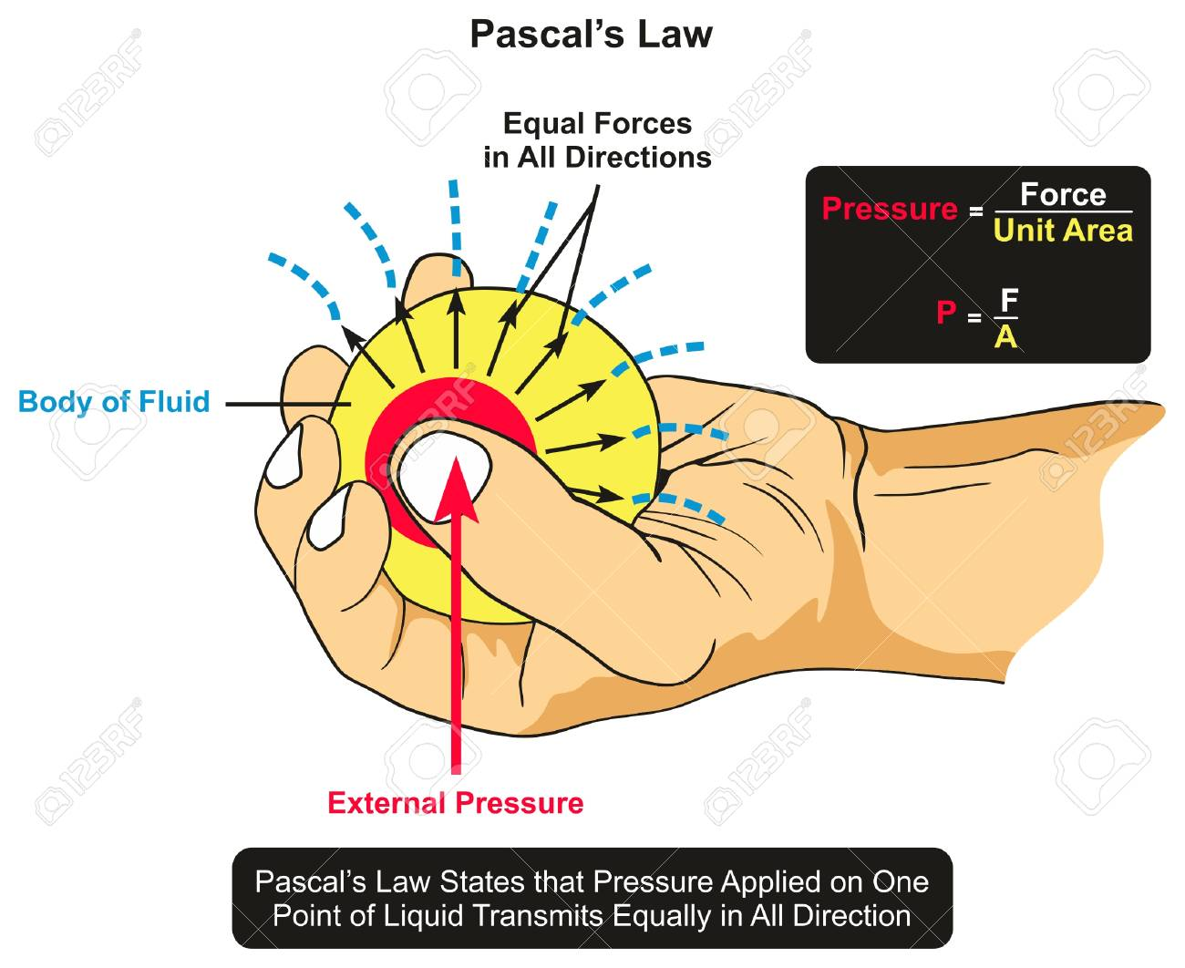 hight resolution of pascal s law infographic diagram showing an example of body of fluid held by hand and an external pressure applied by thumb and the forces transmits equally