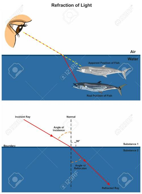 small resolution of refraction of light infographic diagram with an example of human eye looking into fish in water