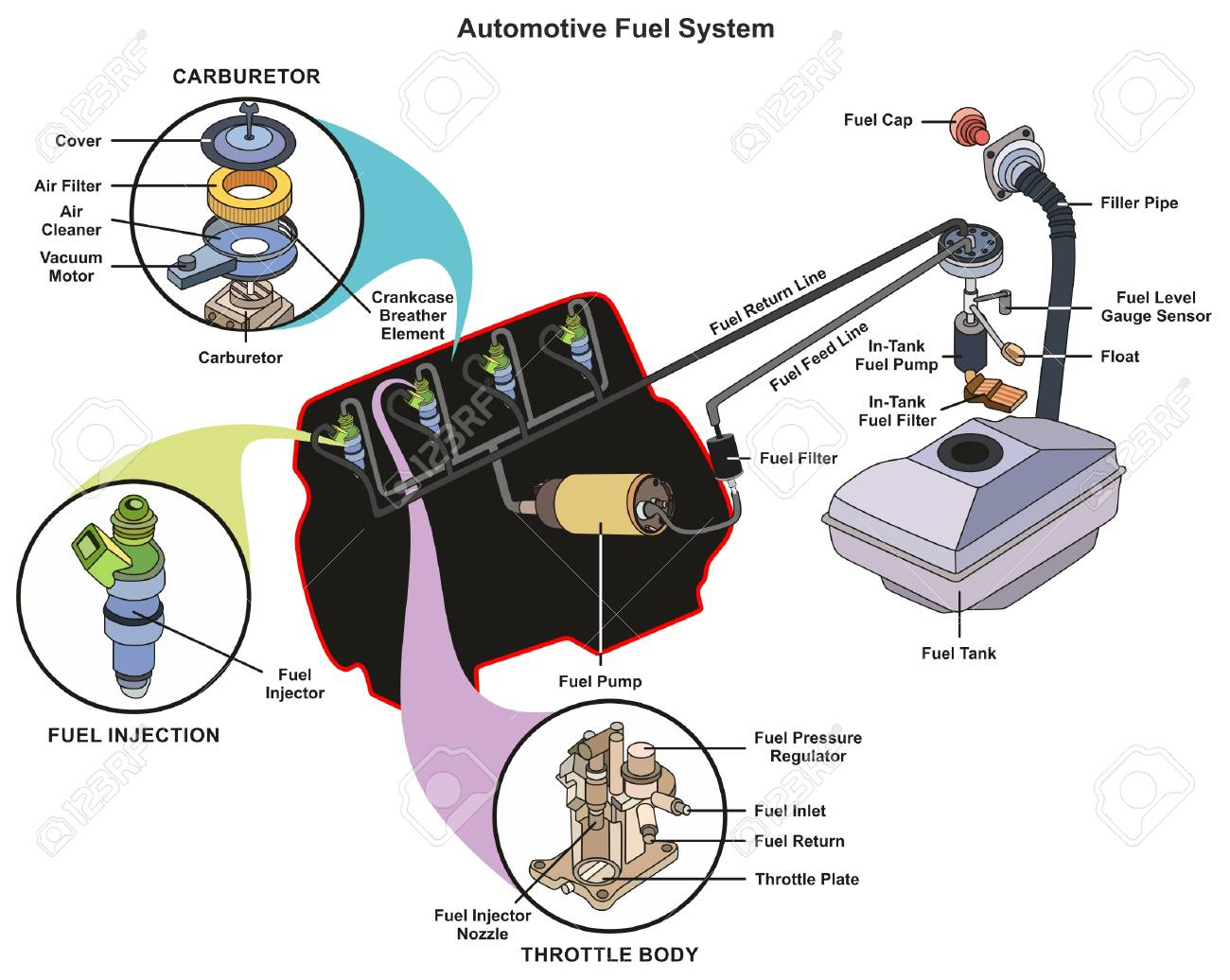 hight resolution of automotive fuel system infographic diagram showing parts of carburetor injector throttle body from tank to engine