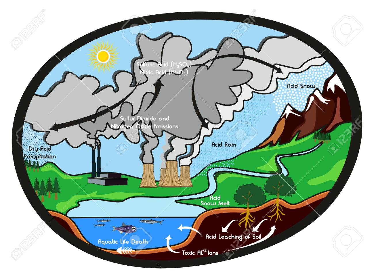 hight resolution of acid rain infographic diagram showing formation cycle of this harmful effect to our environment rain with