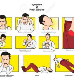 symptoms of heat stroke infographic diagram including headache dizziness vomiting rapid heartbeat shallow breathing confusion unconsciousness [ 1300 x 1053 Pixel ]
