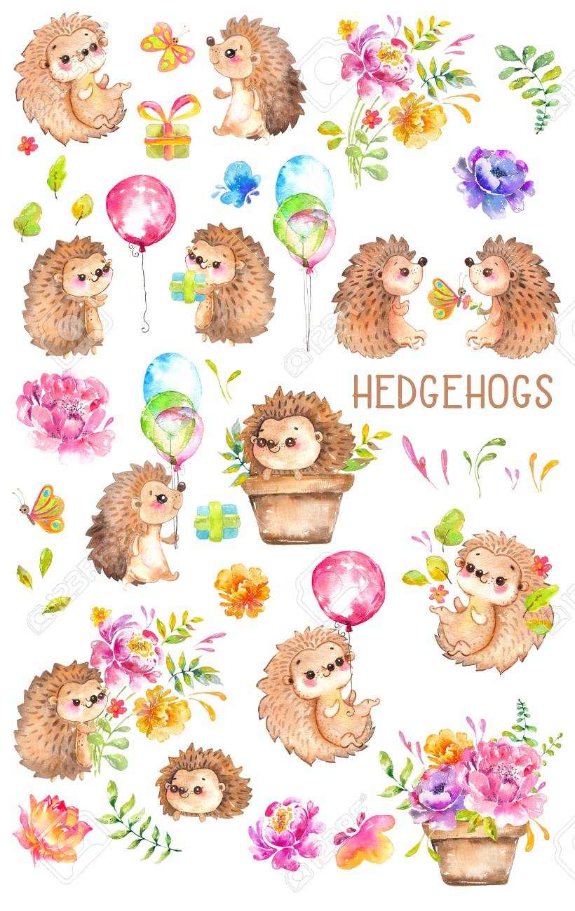 hight resolution of watercolor hedgehogs babies watercolor little animal clipart flowers child kid