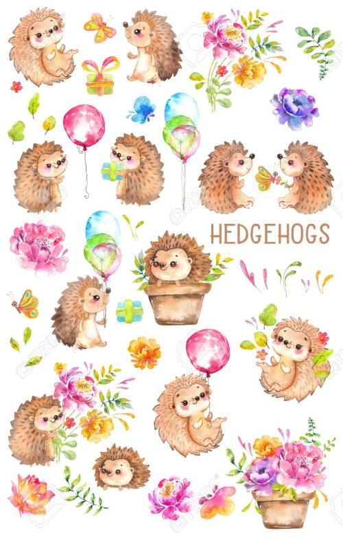 small resolution of watercolor hedgehogs babies watercolor little animal clipart flowers child kid