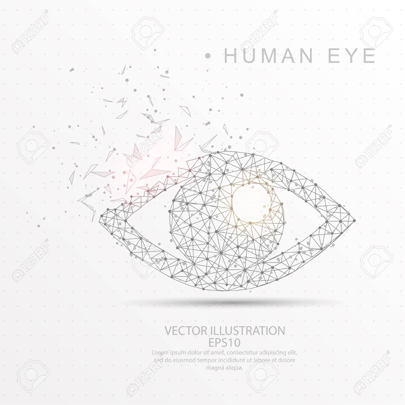 hight resolution of eye shape point stock vector 100476812