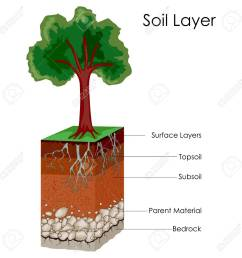 education chart of science for layers of soil diagram stock vector 80712774 [ 1300 x 1300 Pixel ]