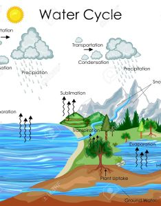 Education chart of water cycle diagram stock vector also royalty free cliparts rh rf