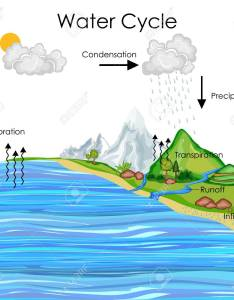 Education chart of water cycle diagram stock photo also picture and rh rf