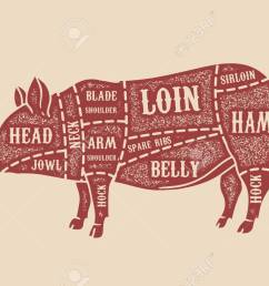 pig butcher diagram pork cuts design element for poster card emblem  [ 1300 x 866 Pixel ]