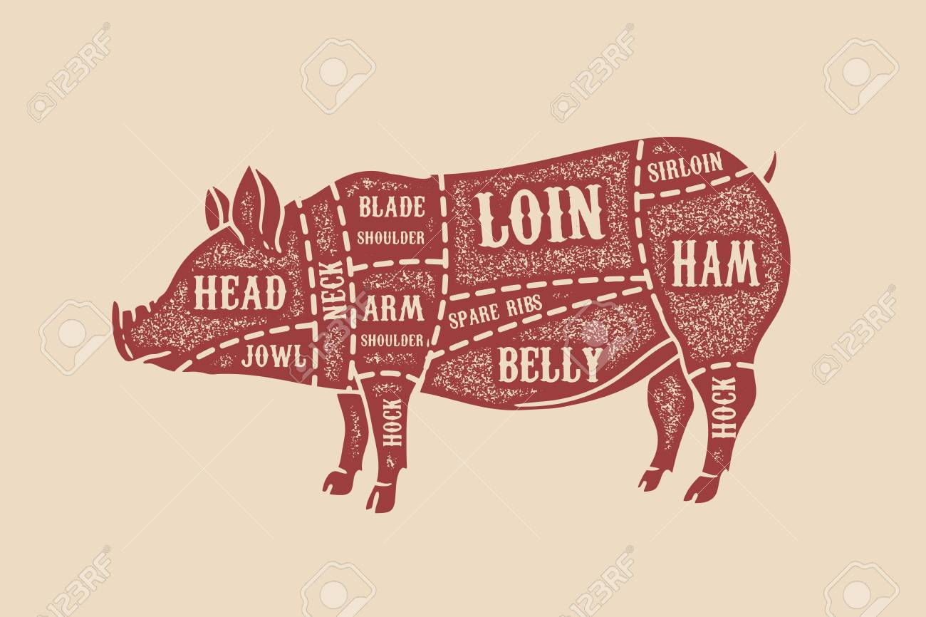hight resolution of pig butcher diagram pork cuts design element for poster card emblem