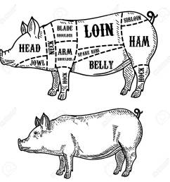 pig butcher diagram pork cuts design element for poster card emblem  [ 1299 x 1300 Pixel ]