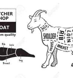 vector illustration goat cuts diagram or chart goat black diagram of goat liver diagram of goat [ 1300 x 831 Pixel ]