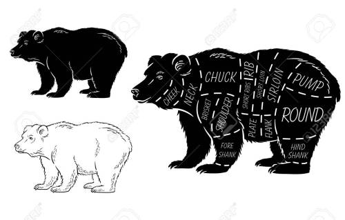 small resolution of cut of bear set poster butcher diagram bear vintage typographic diagram of a teddy bear diagram of a bear