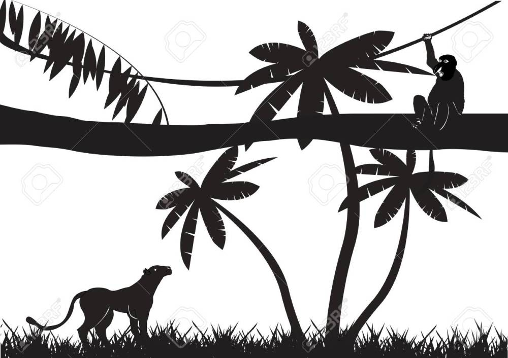 medium resolution of jungle animals silhouettes isolated on white stock vector 53326844