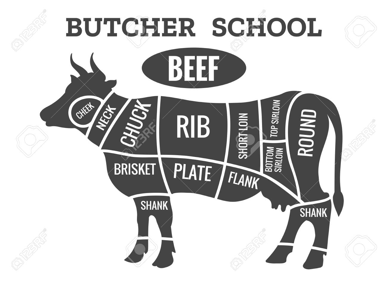 hight resolution of cow butcher diagram cutting beef meat or steak cuts diagram cow butcher diagram beef meat diagram