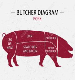 cut of pork poster butcher diagram for groceries meat stores butcher shop  [ 1300 x 1137 Pixel ]