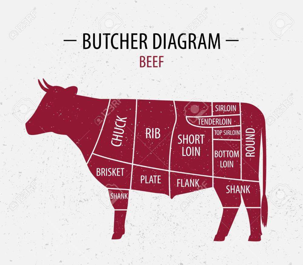 medium resolution of butcher shop diagram wiring diagram online steer butchering diagram 1 2 beef butchering diagram