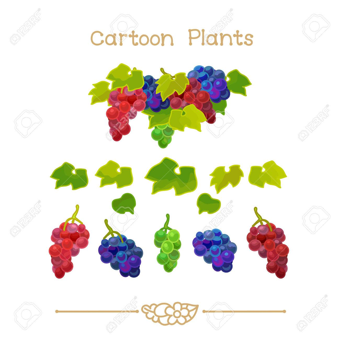 hight resolution of illustration collection cartoon plants grapevine clusters with green leafs set clipart isolated on transparent