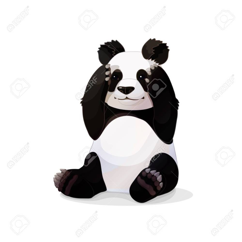 medium resolution of vector vector cartoon animal clipart sitting giant panda