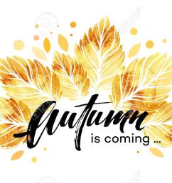 vector watercolor painted autumn leaves banner fall background design vector illustration [ 1300 x 818 Pixel ]