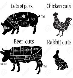 vector illustration chicken rabbit cow and pork cuts diagram [ 1300 x 1300 Pixel ]