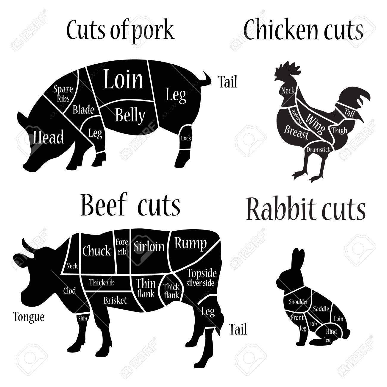 hight resolution of vector illustration chicken rabbit cow and pork cuts diagram