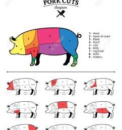 british pork cuts diagram stock vector 115010725 [ 991 x 1300 Pixel ]