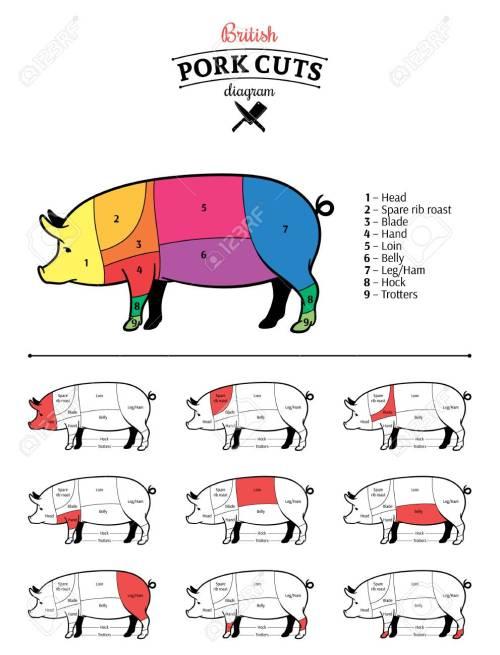 small resolution of british pork cuts diagram stock vector 115010725