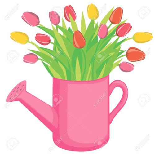 small resolution of bouquest of tulips flowers in the watering can stock vector 9410825
