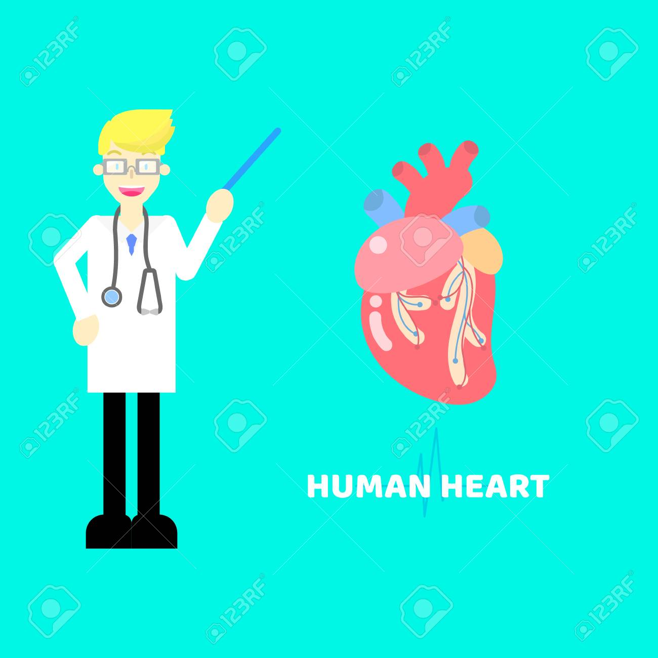 hight resolution of medical internal organs body part nervous system anatomy surgery human heart and stethoscope healthcare label icon