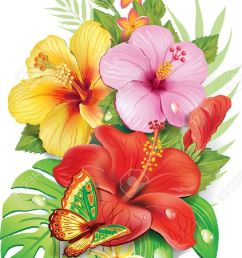 bouquet of tropical flowers stock vector 21214108 [ 856 x 1300 Pixel ]