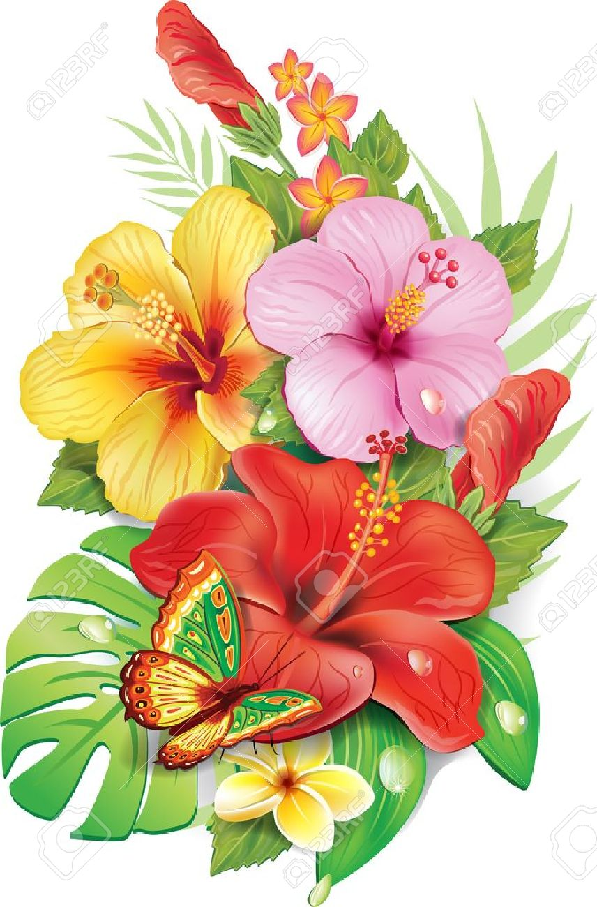 hight resolution of bouquet of tropical flowers stock vector 21214108