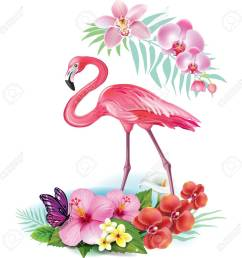 arrangement from tropical flowers and flamingo stock vector 59282180 [ 1300 x 1300 Pixel ]