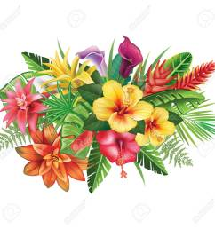 arrangement from tropical flowers stock vector 82878080 [ 1300 x 1300 Pixel ]