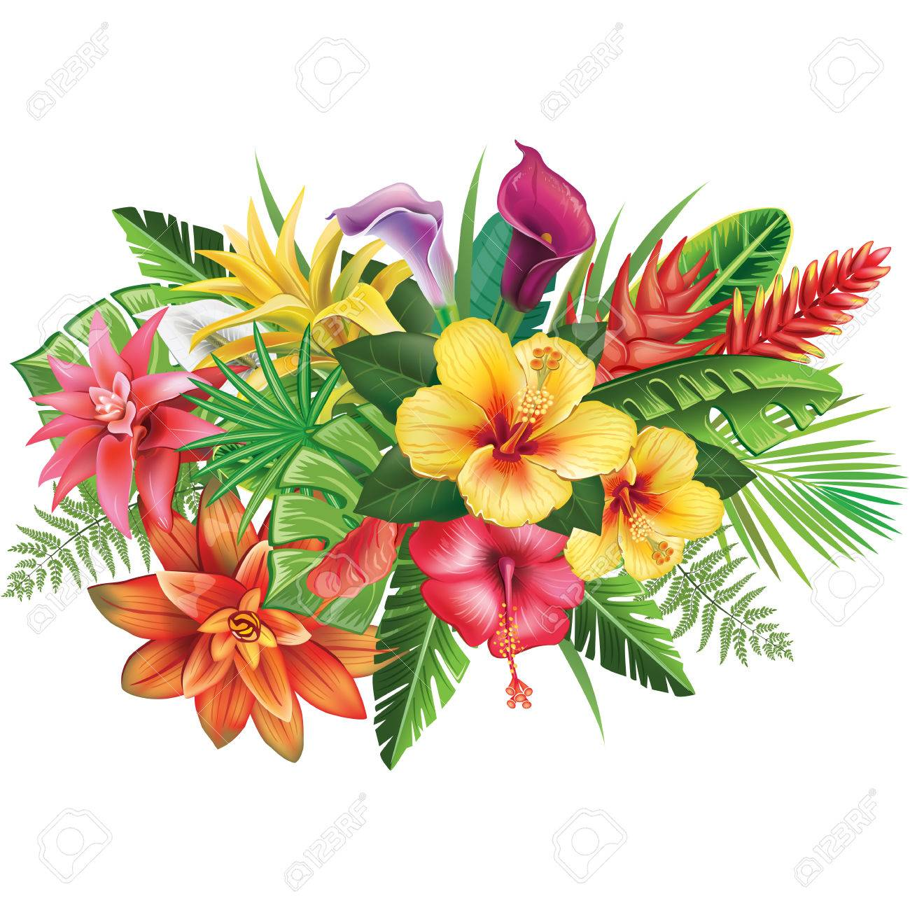 hight resolution of arrangement from tropical flowers stock vector 82878080