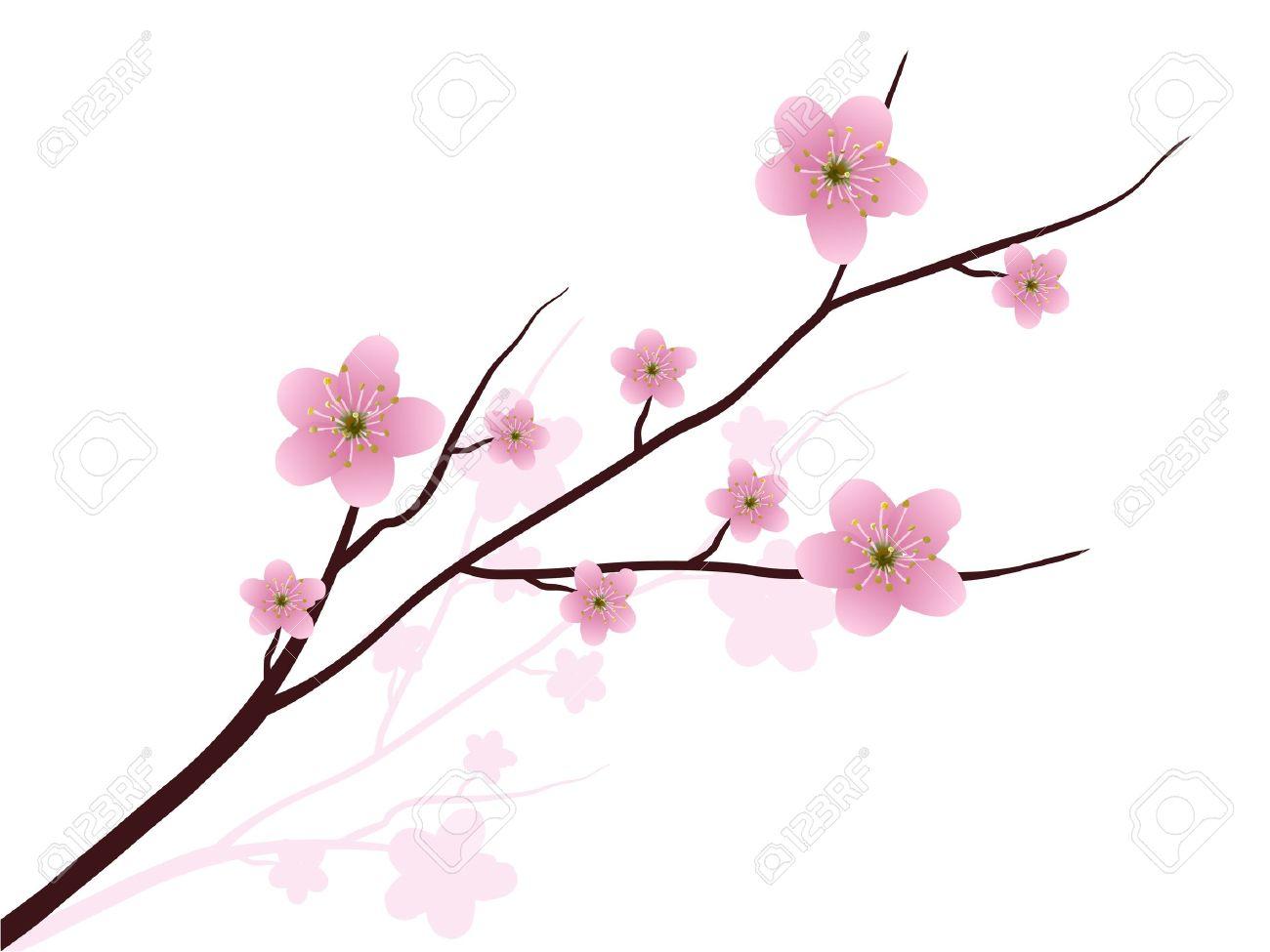 Tatouage Branche De Cerisier Japonais Best Cerisier Japonais