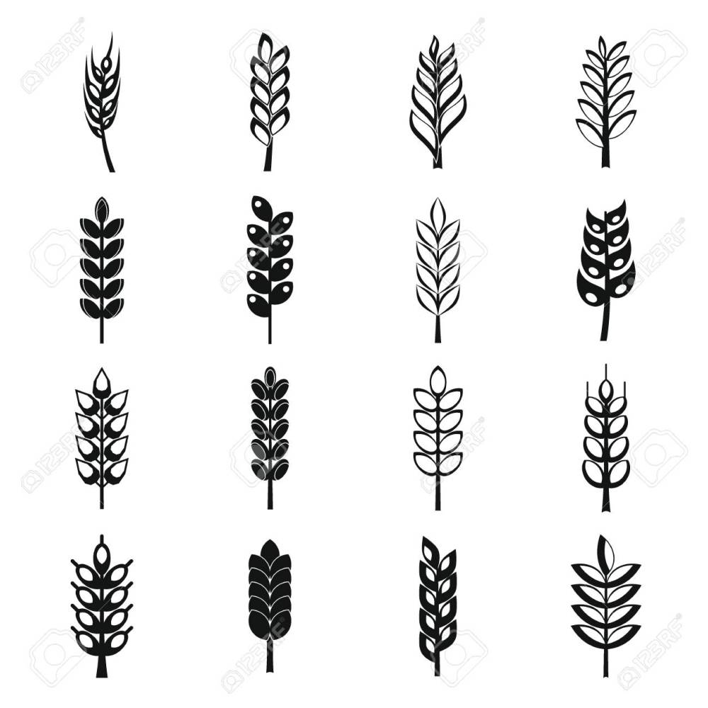 medium resolution of ear corn icons set simple style stock vector 70800726