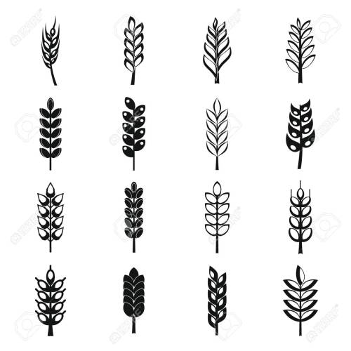 small resolution of ear corn icons set simple style stock vector 70800726