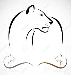 lion on white background lioness clipart black and white [ 1300 x 1300 Pixel ]