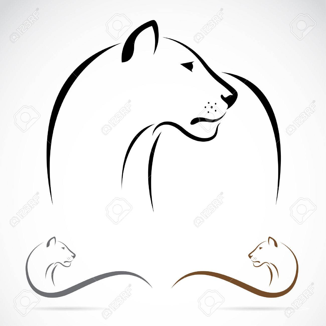 hight resolution of lion on white background lioness clipart black and white