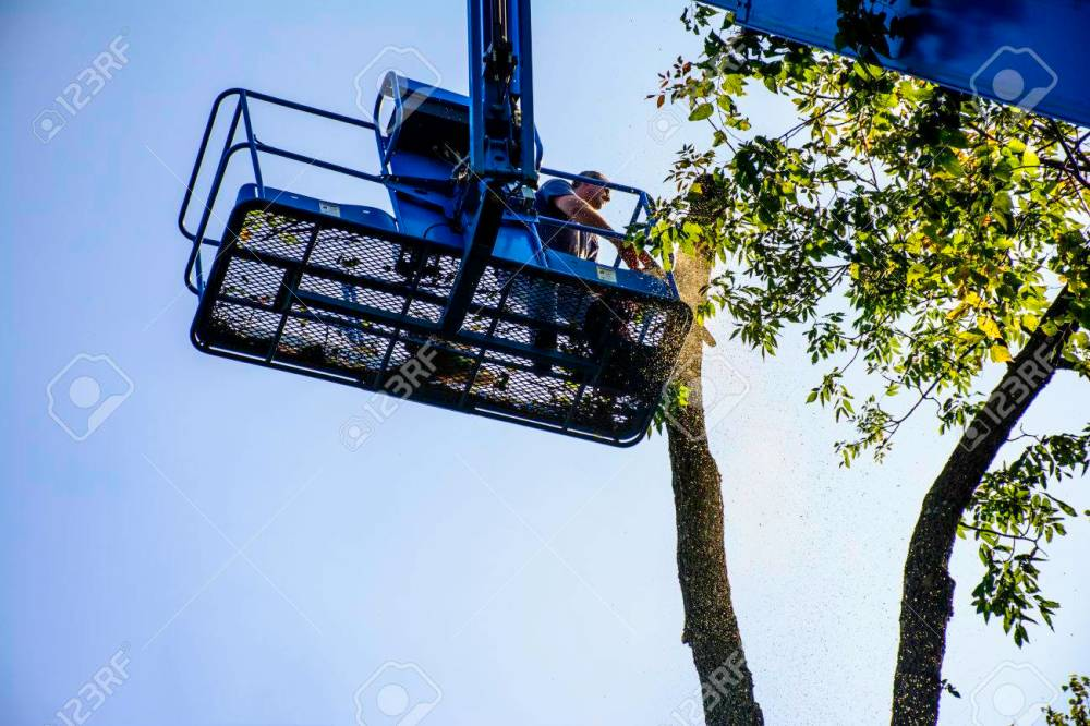 medium resolution of man on aerial lift cutting tree with chainsaw stock photo 72293386