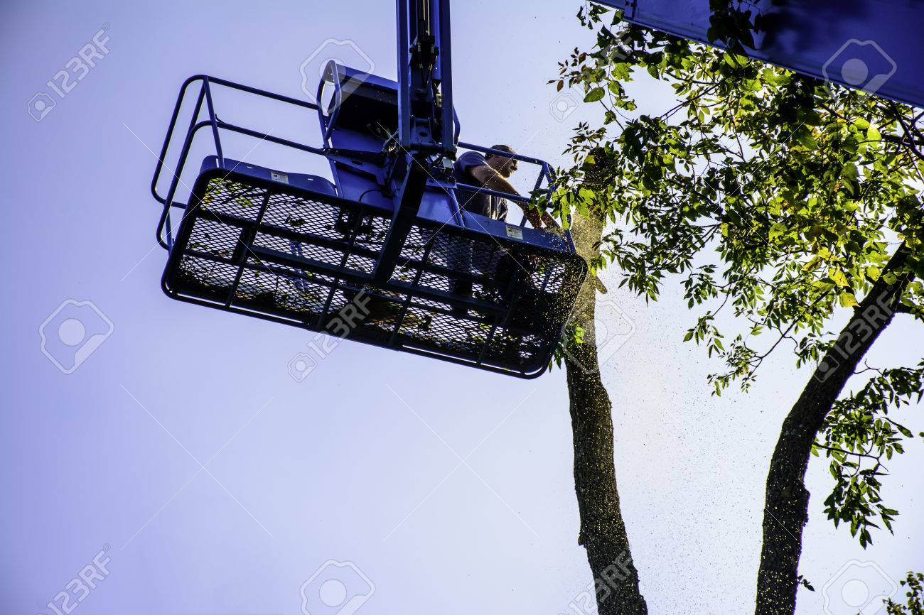 hight resolution of man on aerial lift cutting tree with chainsaw stock photo 72293386